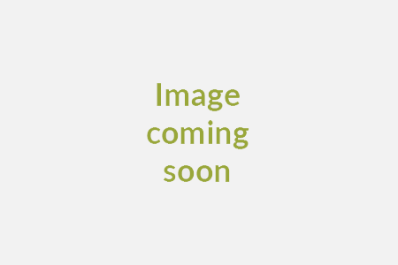 Back view of Renault Megane Hatch 1.3 TCE 140 Iconic
